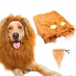 Dogs Pet Halloween Costumes